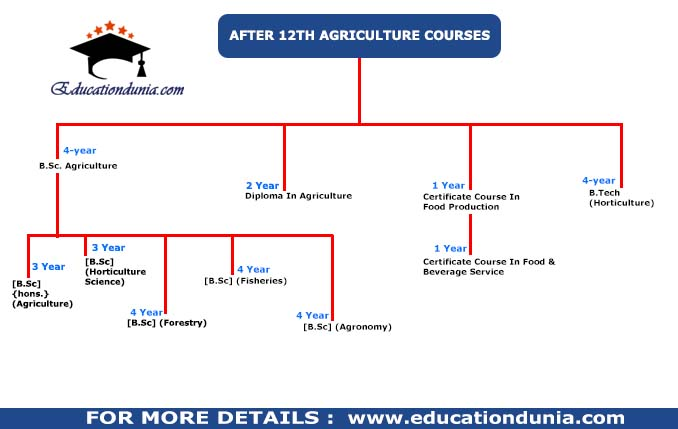 Agriculture Courses after 12th