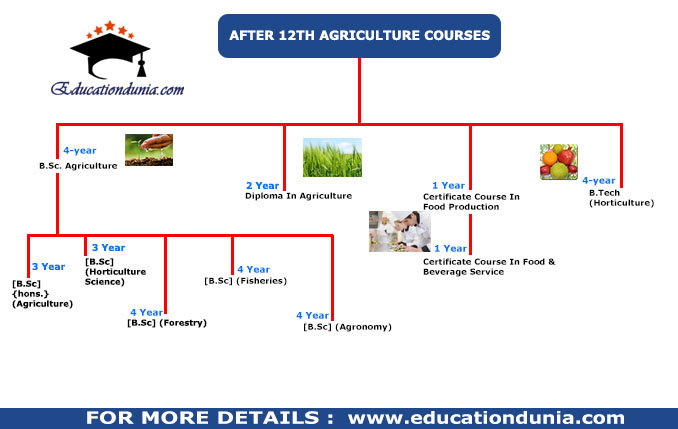 agriculture course after 12th